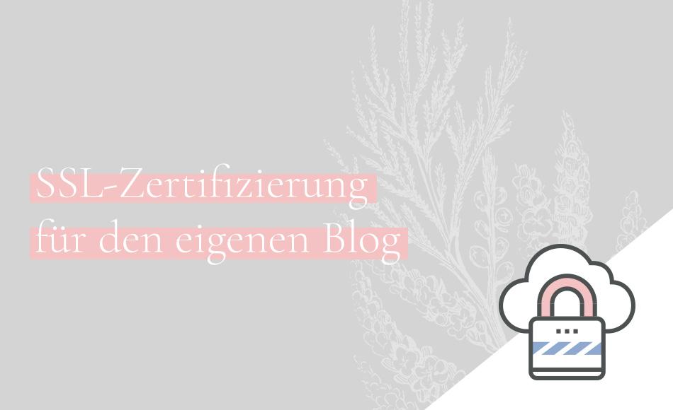 SSL-Zertifizierung und HTTPS für deinen Blog einrichten   ALPHASINN